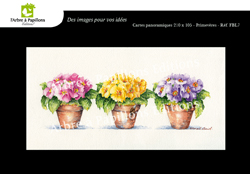 images/ClassGrandes/Collection_florale_Francine_Bosment_Lanciot/Frederic-FrancineBosment-Panoramique.jpg